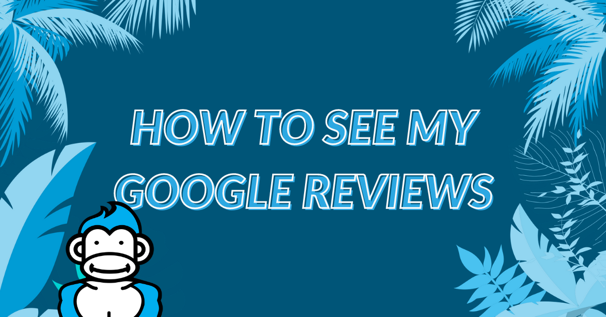 "Image displaying the guide title ""How to see my Google Reviews"""
